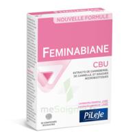 Pileje Feminabiane Cbu 30 Comprimés Bicouches à MARSEILLE