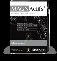 Synactifs Magnactifs Gélules B/60 à MARSEILLE