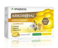 Arkoroyal Propolis Pastilles Adoucissante Gorge Guimauve Miel Citron B/24 à MARSEILLE