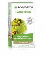 Arkogélules Garcinia Gélules Fl/45 à MARSEILLE
