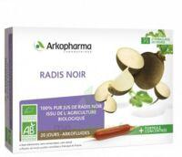 Arkofluide Bio Ultraextract Radis Noir Solution Buvable 20 Ampoules/10ml à MARSEILLE