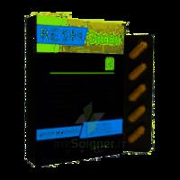 Synactifs Respigreen Bio Gélules B/10 à MARSEILLE