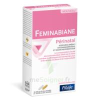 Pileje Feminabiane Périnatal 28 Gélules Blanches Et 28 Gélules Jaunes à MARSEILLE