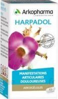 ARKOGELULES HARPAGOPHYTON Gélules Fl/150 à MARSEILLE