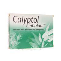 Calyptol Inhalant, émulsion Pour Inhalation Par Fumigation à MARSEILLE