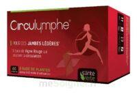 Santé Verte Circulymphe Triple Actions B/30 à MARSEILLE