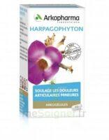 Arkogelules Harpagophyton Gélules Fl/45 à MARSEILLE