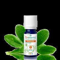 Puressentiel Huiles essentielles - HEBBD Ravintsara BIO* - 5 ml à MARSEILLE