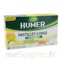 HUMER PASTILLE GORGE à l'etrait sec de thym 24 pastilles à MARSEILLE