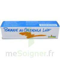 Calendula Lhf Pom T/20g à MARSEILLE