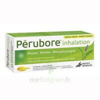 PERUBORE Caps inhalation par vapeur inhalation Plq/15 à MARSEILLE