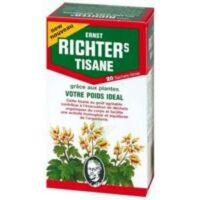 Ernst Richter's Tisane poids idéal 20 Sachets à MARSEILLE