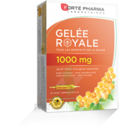 Forte Pharma Gelée royale 1000 mg Solution buvable 20 Ampoules/10ml à MARSEILLE