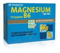Arkovital Magnésium Vitamine B6 Gélules B/120 à MARSEILLE