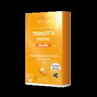 Terracotta Cocktail Solaire Comprimés B/30 à MARSEILLE