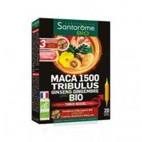 Santarome Bio Maca 1500 Tribulus Ginseng Gingembre Solution buvable 20 Ampoules/10ml à MARSEILLE
