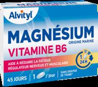 Govital Magnésium Vitamine B6 Comprimés B/45 à MARSEILLE