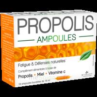 3 CHENES PROPOLIS Solution buvable 10 Ampoules/10ml à MARSEILLE