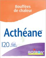 Boiron Acthéane Comprimés B/120 à MARSEILLE